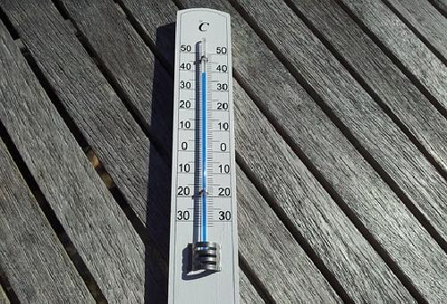 クワガタ 温度管理 発泡スチロール 保冷剤