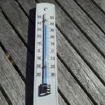 クワガタを飼育するのに発泡スチロールと保冷剤を使って温度管理しましょう