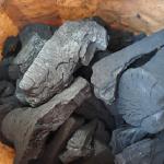 クワガタに付着したダニを マットを砂に変更し炭を入れるて抑止できるのか?