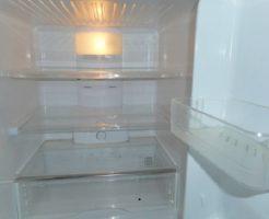 ミヤマクワガタ 冷蔵庫 飼育